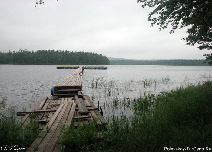 На базе отдыха 'Домик рыбака' разводят форель и осетров. Фото Карпова С.О., сентябрь 2011 г.