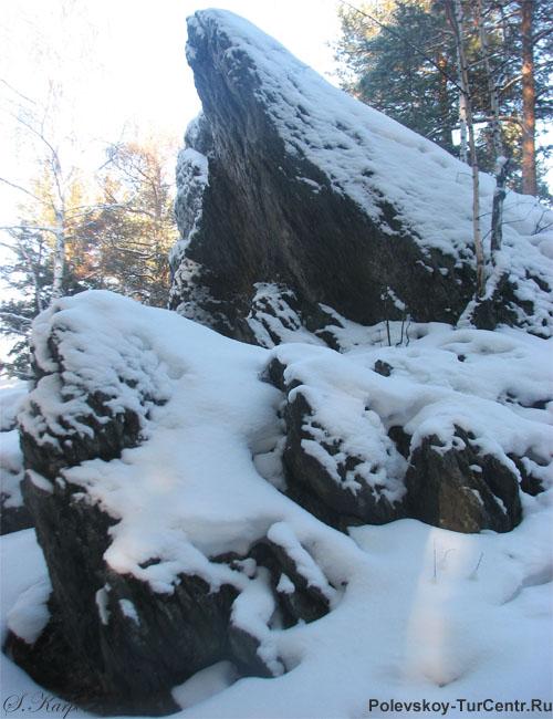 Фото в лесу палатки