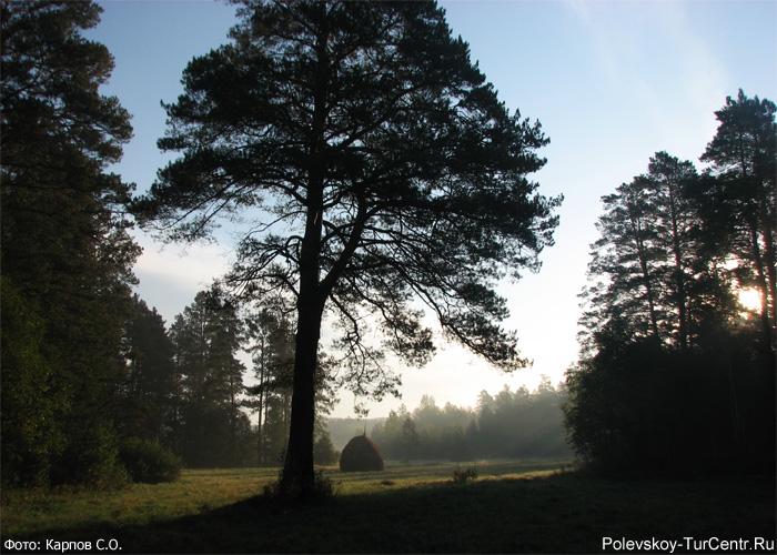 Красоты окрестностей реки Западной Чусовой. Фото Карпов С.О., 2012 г.