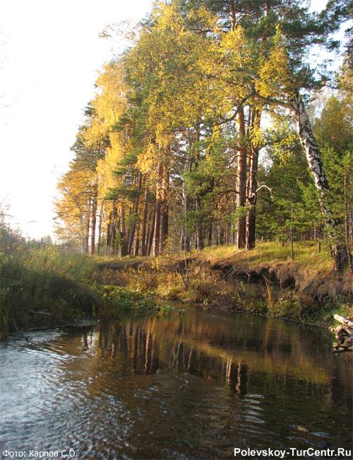Река Западная Чусовая. Фото Карпова С.О.